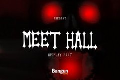 Meet hall Product Image 1