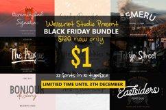Font Bundles - Special Black Friday Product Image 1