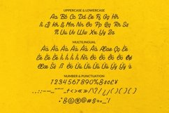 Web Font Therixa Font Product Image 5