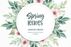 Spring leaves. Watercolor set Product Image 1