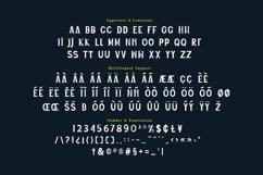 Web Font Rivieri Display Font Product Image 4