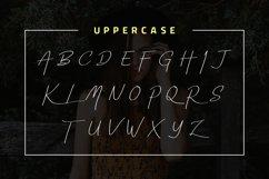 Yuniarsih Script Product Image 6