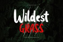 Wildest Grass Product Image 1
