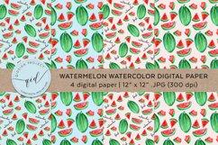 Watermelon Watercolor Digital Paper 4 JPG 300dpi Product Image 1