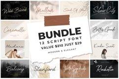 Bundles Monoline Script Font Product Image 1