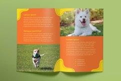 Dog Walker Print Pack Product Image 3