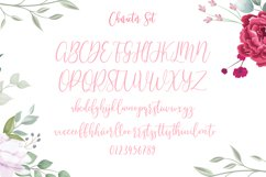 Righttoast Beauty Script Font Product Image 9