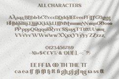 Abraghen | Ligature Serif Product Image 5