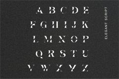 Elva | Modern Serif Product Image 4