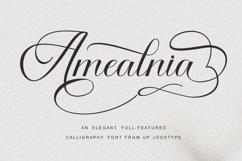 Calligraphy Font Bundle Product Image 5