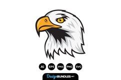 Bald Eagle Illustrations Product Image 1