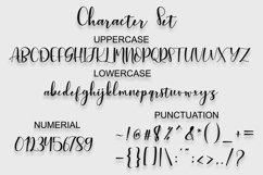 shilla Script Product Image 6