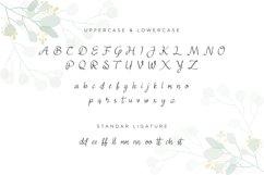 Juliyeta script font Product Image 4