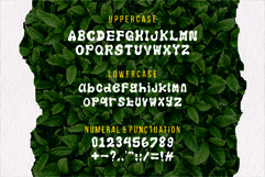 Azalea art font Product Image 6
