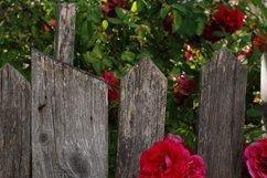 Village fence digital photo backdrop, farm backdrop Vol3 Product Image 2