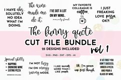 Funny Quote SVG Bundle | Volume One | Funny SVG Designs Product Image 1