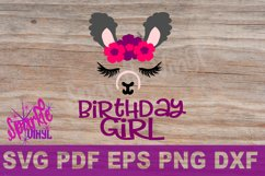 LLama Party, Llama birthday, LLama Face svg, Girl Llama svg, Product Image 2