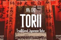 Web Font Shinigami Font Product Image 2