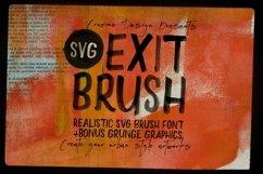 Exit Brush & SVG Font Product Image 1