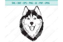 Husky SVG, Husky Silhouettes, Dog SVG, Pets Dxf, Png, Eps Product Image 1