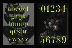 ACTU Typeface Product Image 3