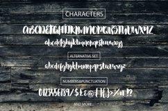 Web Font Dusty Lane - Handwritten Brush Font Product Image 6