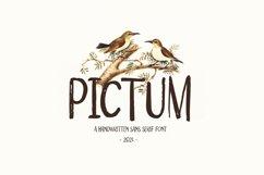 Pictum - Handwritten Product Image 1