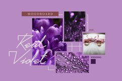 Real Violet - Signature Style Font Product Image 2