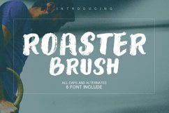 Roaster Brush Collection Product Image 1