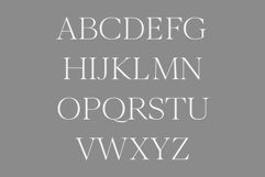 Wensley Modern Serif Font Family Product Image 3