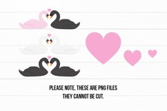 Cute Swans PNG Clipart Set - Swan Clipart Product Image 5