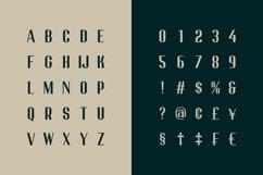 Mason Elegant Typeface Product Image 3