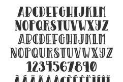Cedar Font Product Image 5