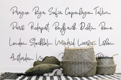 Bellontze.Textured script & swashes Product Image 6