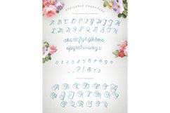 Karenina Script Font + Cute Vectors Product Image 5