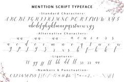 Menttion Script Product Image 6