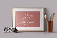 Belfast - A Dry Brush Script Product Image 3