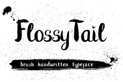 Flossy Tail brush handwritten font Product Image 1