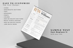 3 Page Professional Resume. Accountant Sales Resume, CV Product Image 5