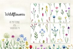 Watercolor Wildflowers. Patterns Product Image 2