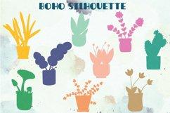 House Plants Color, Cactus, Flower Pot, Hanging Indoor Plant Product Image 6