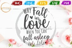 Why Fall In Love Valentine SVG PDF PN Product Image 1