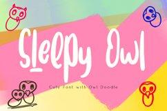 Sleepy Owl Fun Font Product Image 1