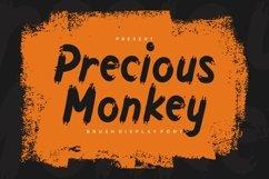 Precious Monkey - Brush Display Font Product Image 1