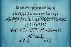 Sulifec | Calligratype Script Font Product Image 6