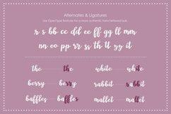 Wonderland, a modern calligraphy font Product Image 4