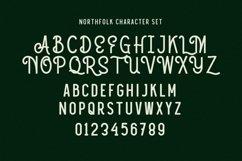 Web Font Nothfolk Product Image 4