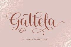 Gattela Product Image 1