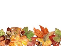 Autumn leaves, watercolor Product Image 6