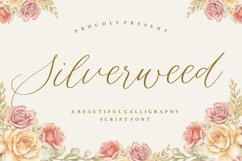 Silverweed Beautiful Calligraphy Script Font Product Image 1